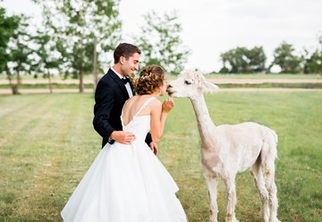 Rustic Colorado Wedding Inspiration