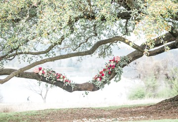 Old World Bohemian Chic: A Floral Tree Elopement