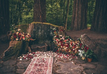 Romantic Boho Elopement in the Redwoods